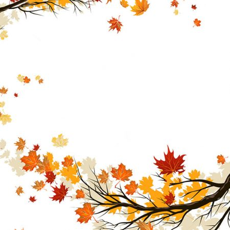 stock-vector-fall-background-with-leaves-autumnal-frame-from-trees-205162855
