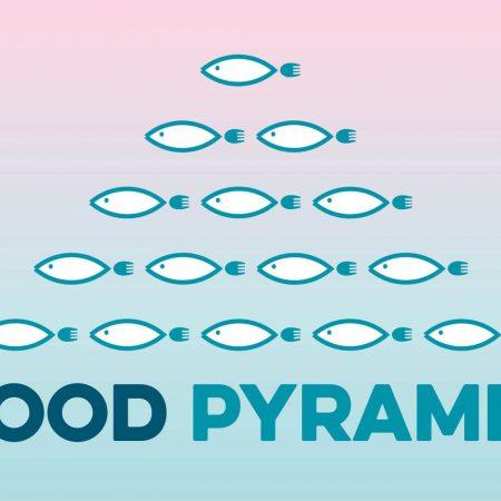 9-piramide_facebook